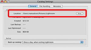 Lightroom Catalog Settings
