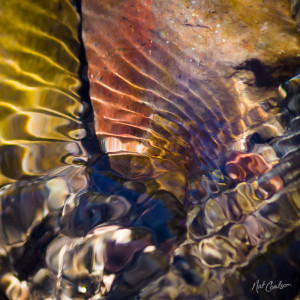 Abstract Nature Photograph: Flow III by Nat Coalson